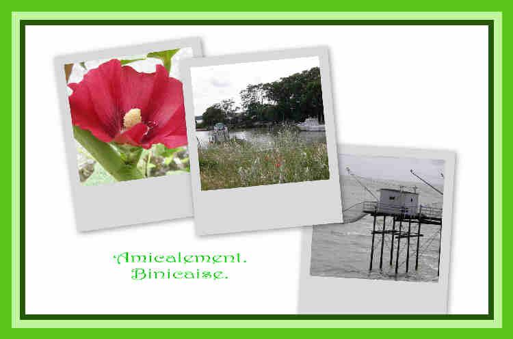 cartepostalebis.jpg