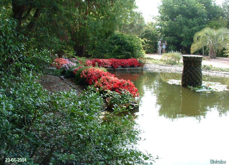 jardinexotiquedeponteilla29.jpg