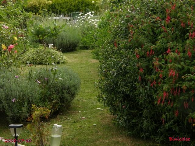 jardinsdt17105359.jpg