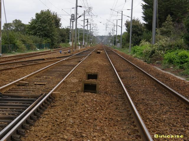 rail64001.jpg