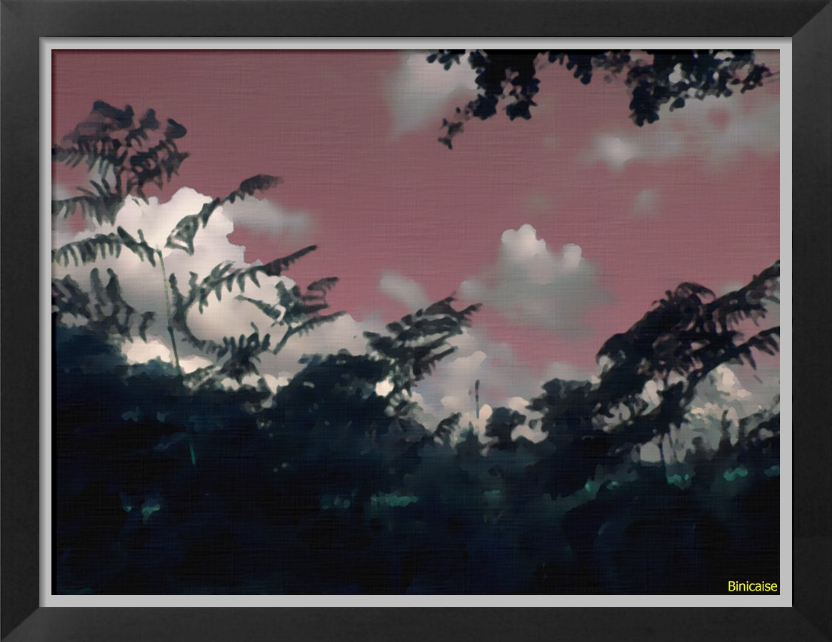 paysagesnocturnes.jpg