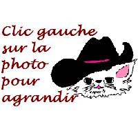 clicgauchebouton.jpg