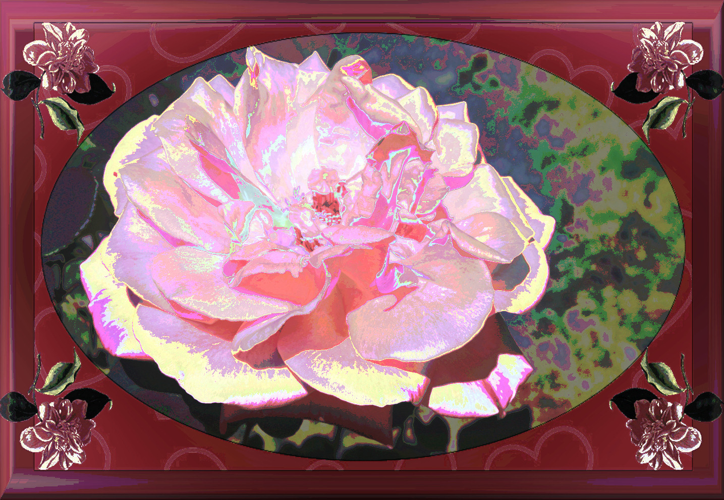 roseencadre.jpg