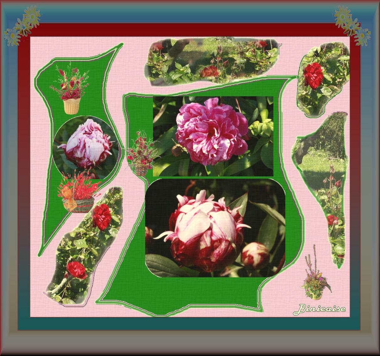 rosesetpivoines.jpg