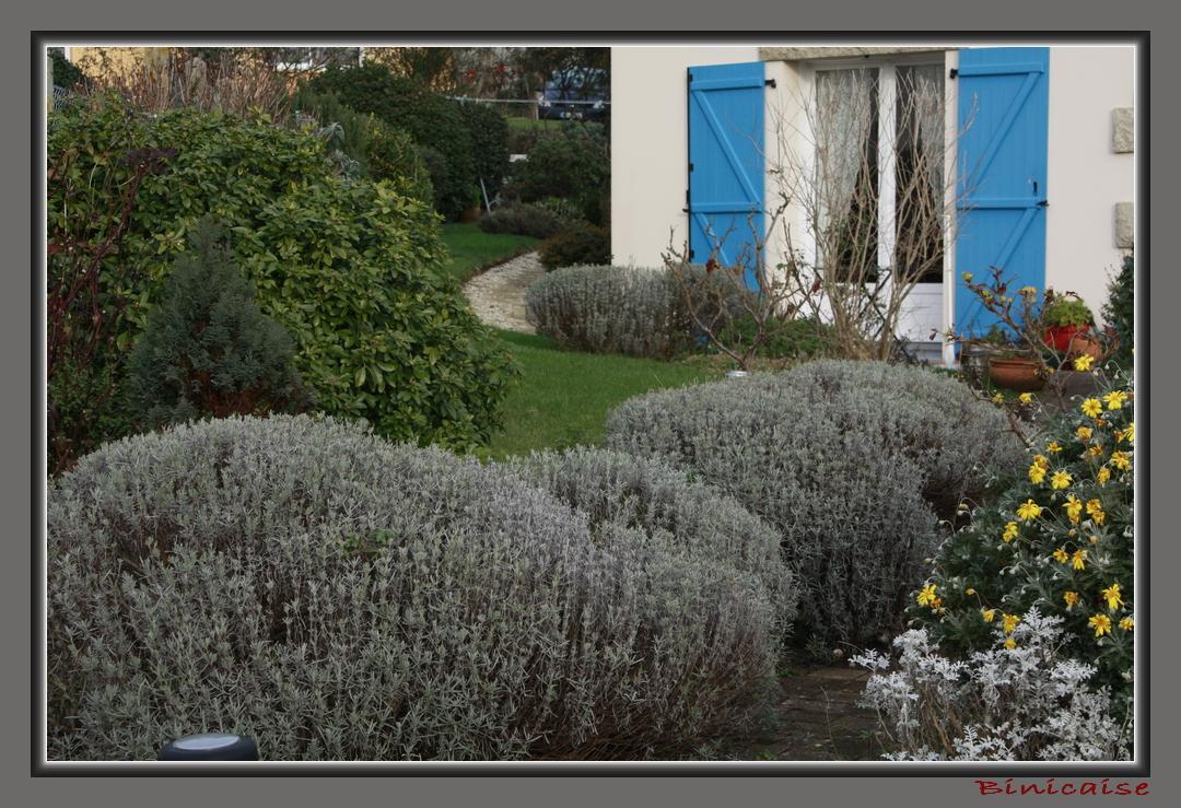 binicaise hiver au jardin