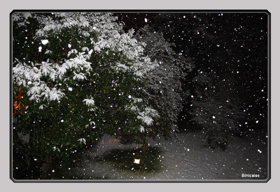 neigeauray.jpg