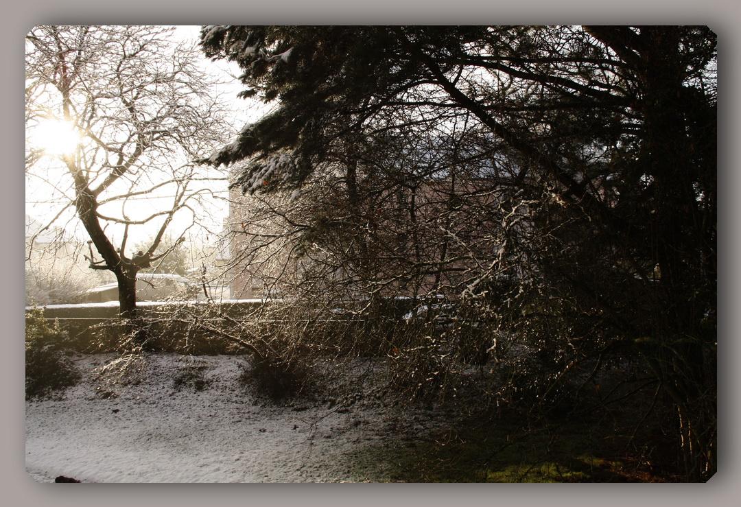 neigeauray2.jpg