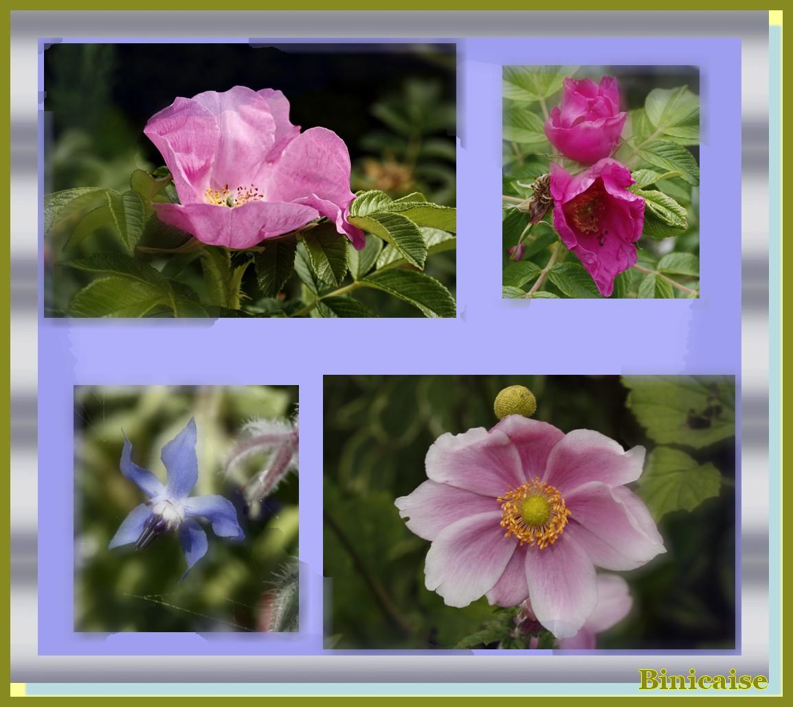 rosesanmonesetc.jpg