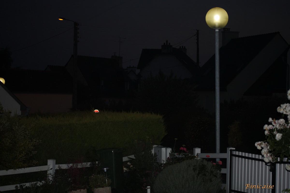 nuitsurlejardin0001.jpg