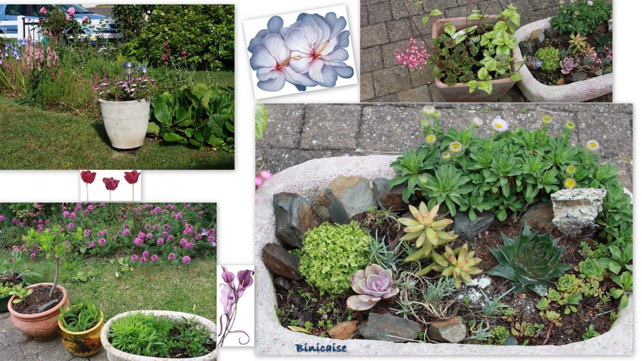 fleursarbresetcredimensionner.jpg
