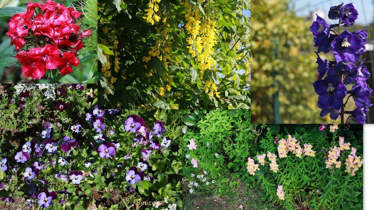 jardinmai02redimensionner.jpg