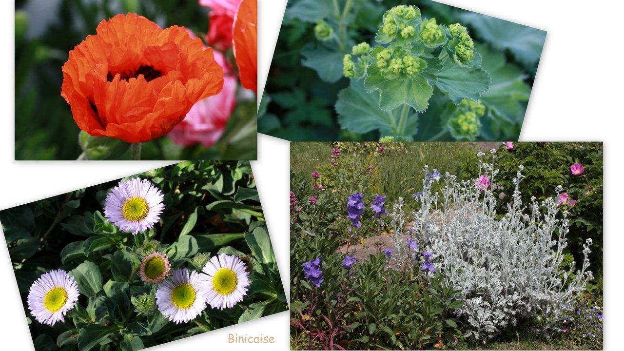 jardinmairedimensionner.jpg