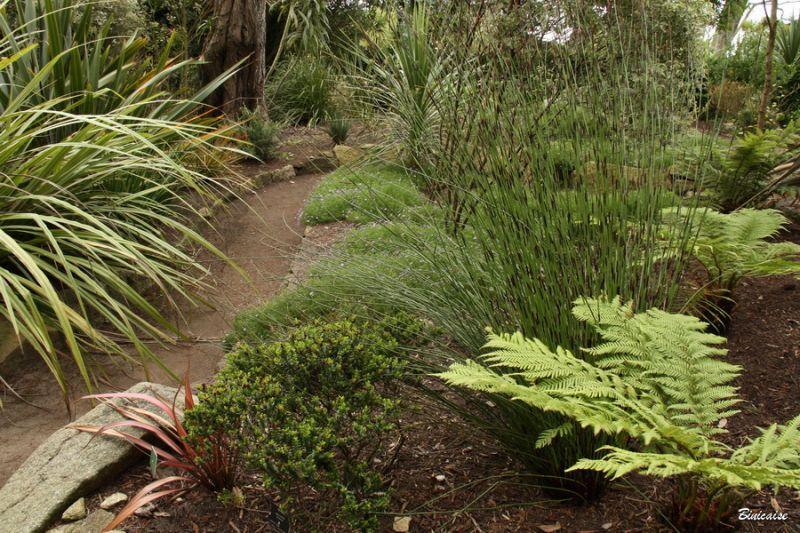 jardindesterresaustrales0001.jpg