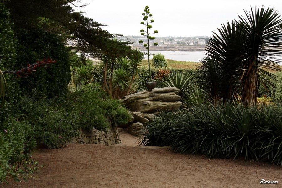 jardindesterresaustrales0003.jpg