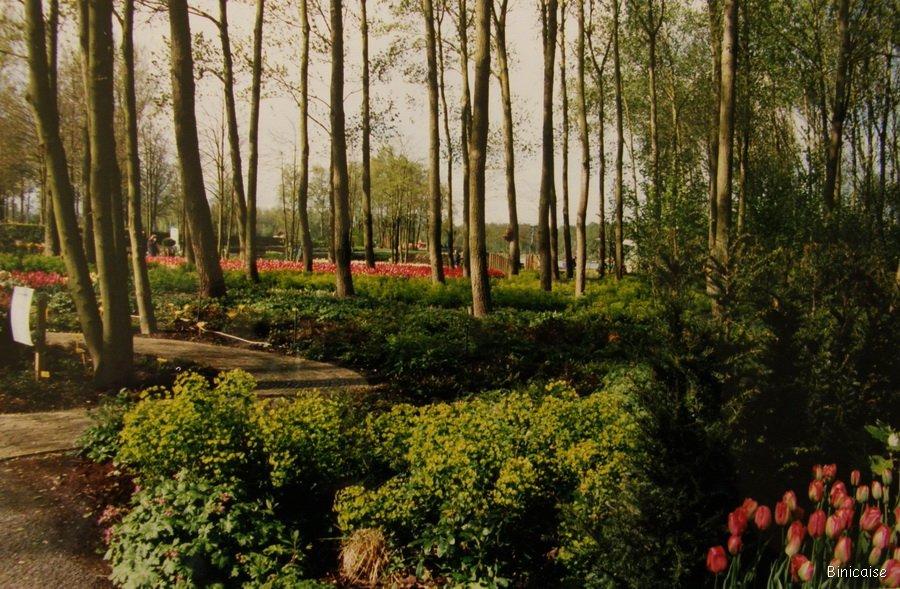 Hollande-parc-floral-02 Parc floral