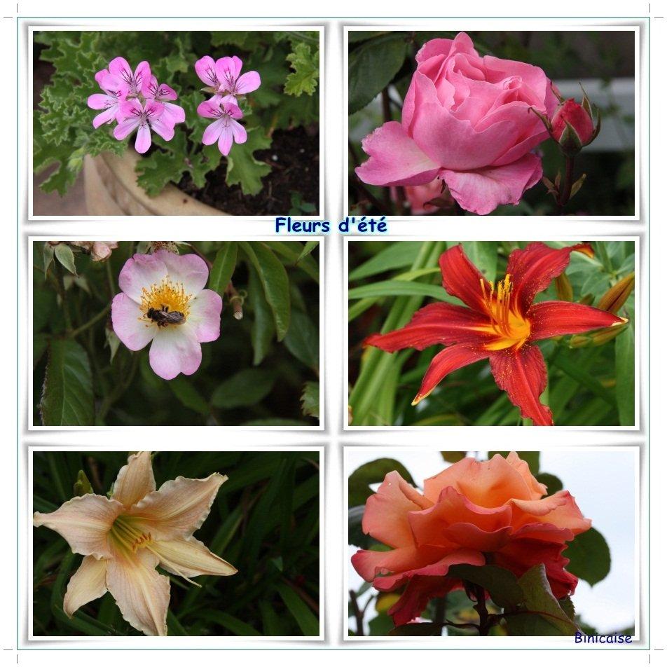 Fleurs d'été. dans Creations Page-de-contact-fleurs