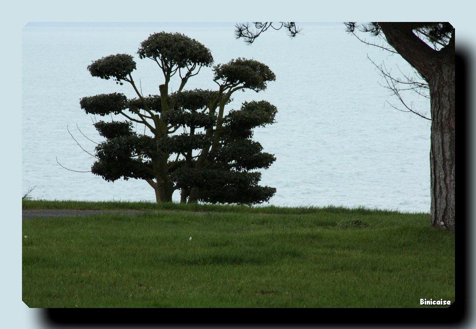 Hiver à Binic. dans Bretagne Binic-12-02-05-03