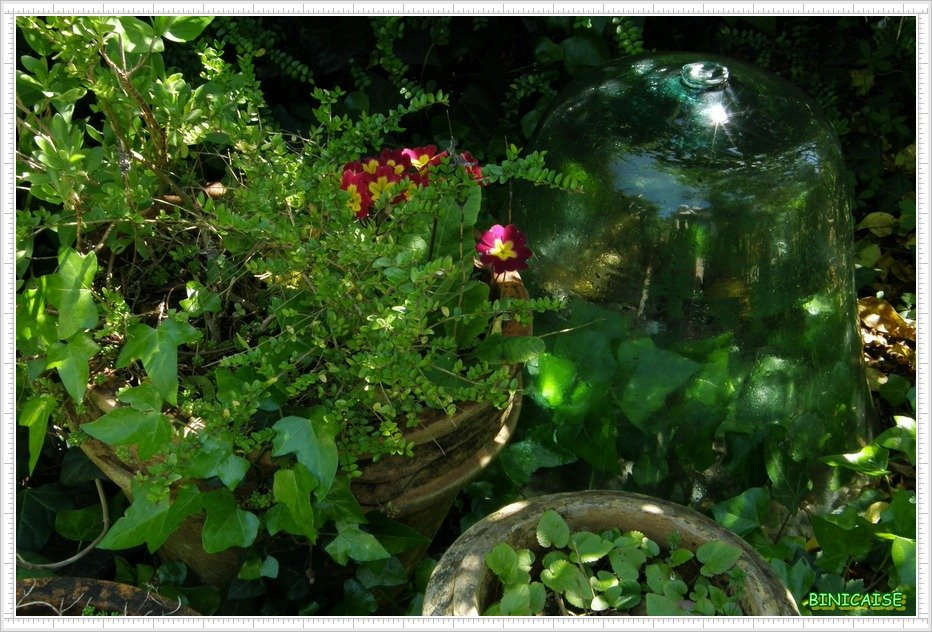 Coin secret. dans Jardin binicaise Coin-secret