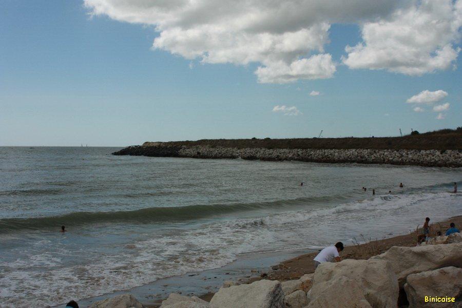 Plage du Chef de Baie . La  Rochelle. dans La Rochelle IMG_5698_redimensionner