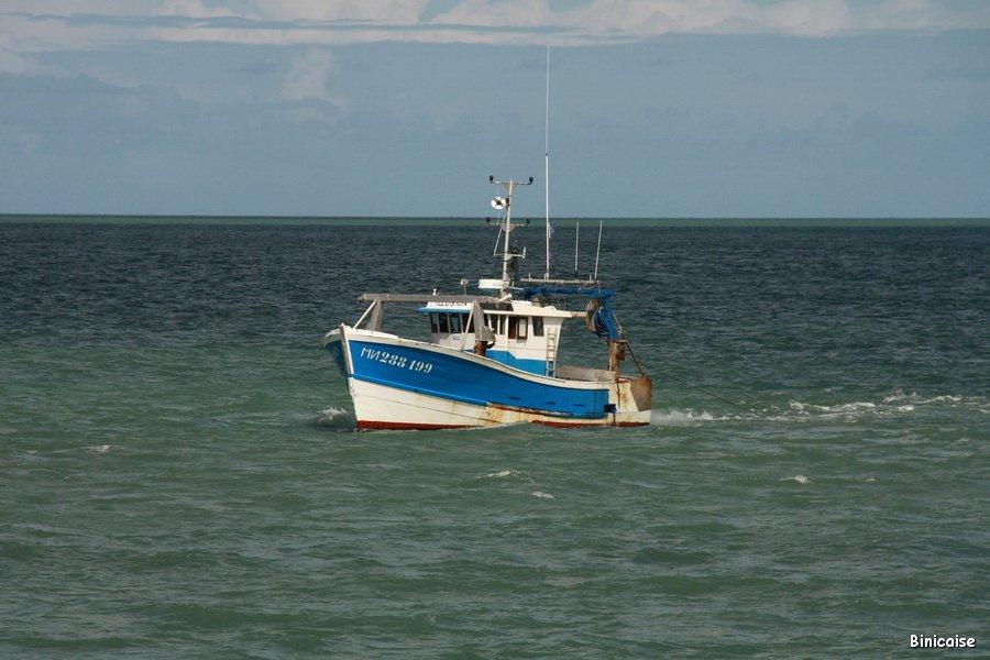 En pêche au large de La Rochelle . dans La Rochelle IMG_5771_redimensionner