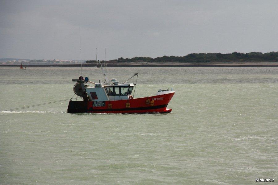 IMG_5772_redimensionner Pêche dans Photos