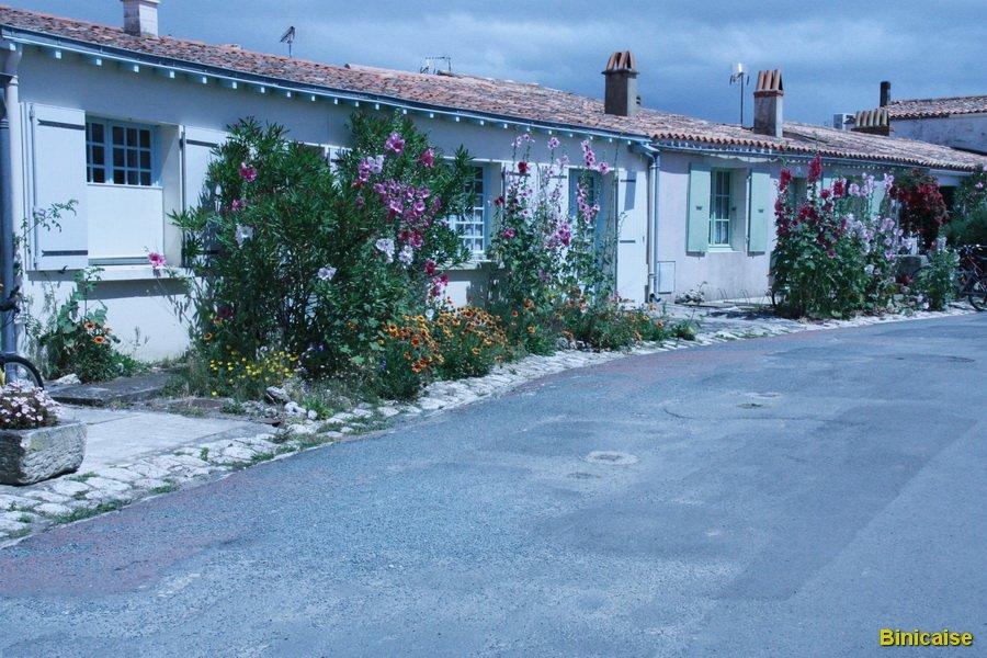 Ile d'Aix 1 dans La Rochelle IMG_5887b_redimensionner