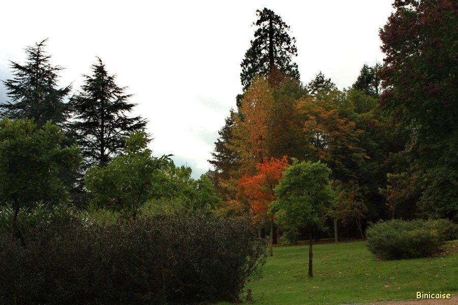 Arboretum de Tessé. dans Normandie arboretum-de-tesse-05