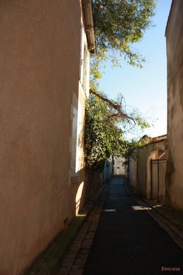 rue-du-paradis-01 Paradis dans Photos