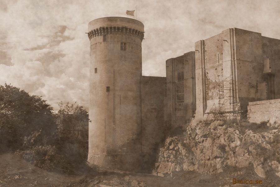 Château de Falaise . dans Normandie chateau-de-falaise