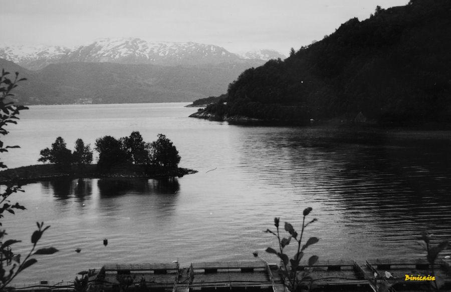 Fjord en Norvège. dans Photos fjord-en-norvege-06