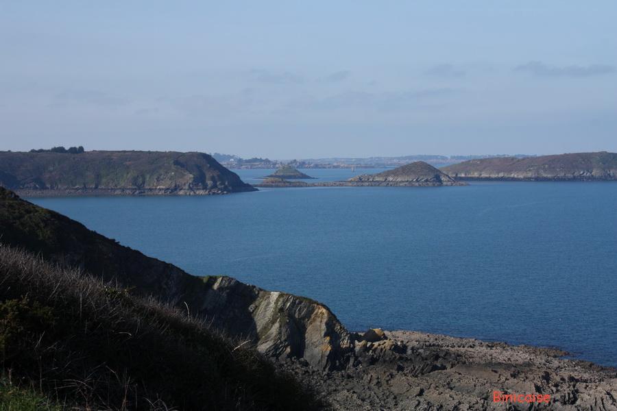 Les falaises de Plouha. dans Bretagne img_4552