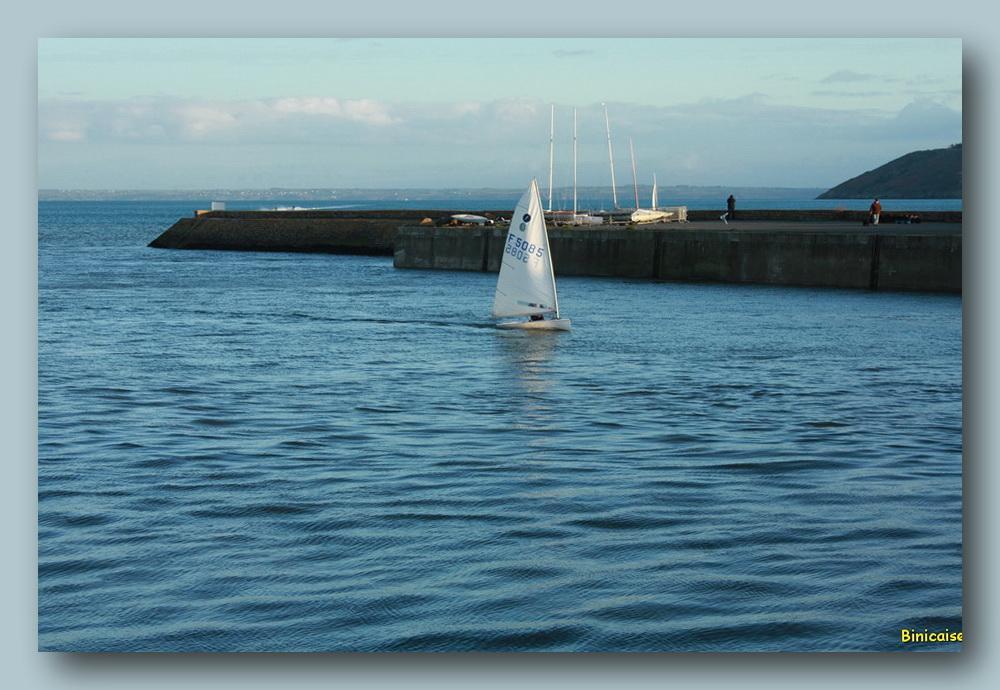 Voile dans l'avant port. dans Bretagne voilier-04