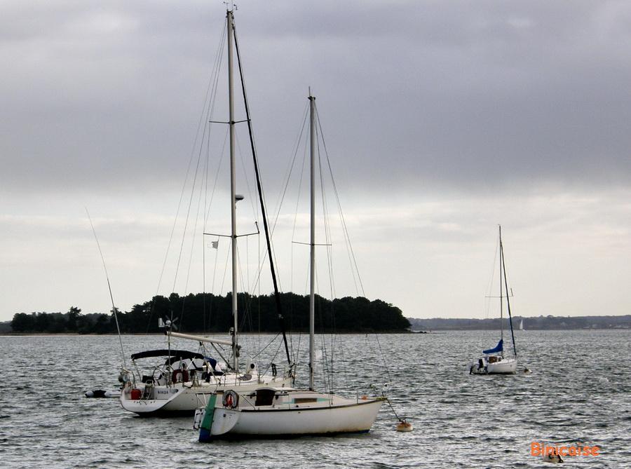 bateau-dans-le-golfe Golfe du Morbihan dans Photos