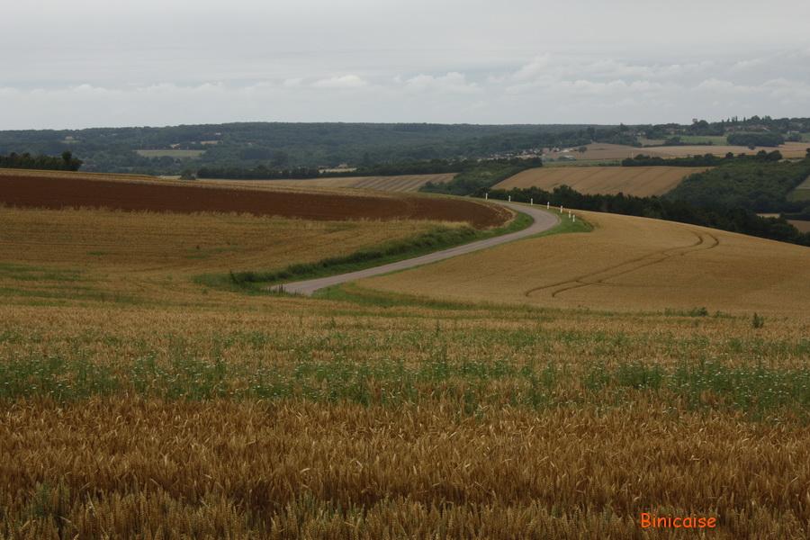 Paysage de Puisaye Forterre. dans Photos paysage-de-puisaye-forterre