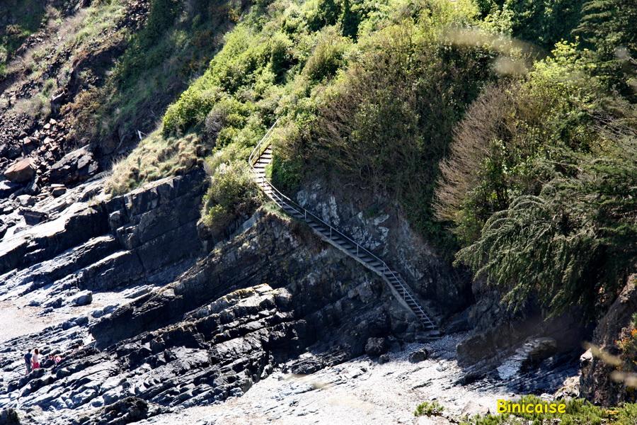 Chemin vers la plage. dans Bretagne escalier-vers-la-plage