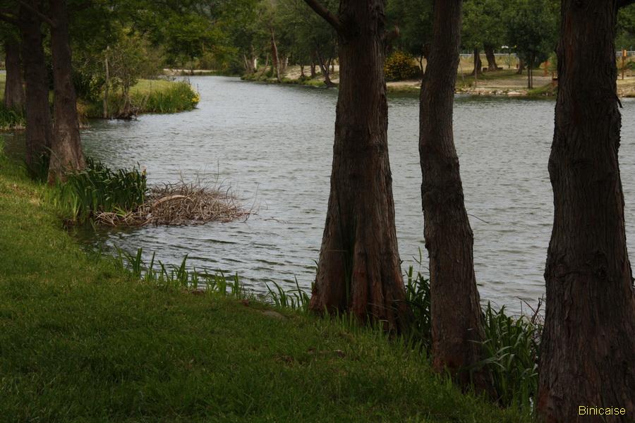 Les lacs de Millas 3 dans Photos millas-2013-02