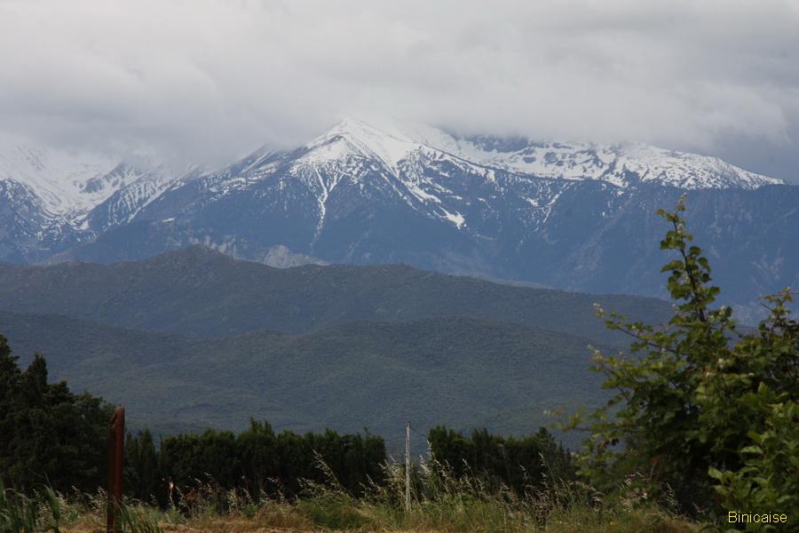 Pyrénées les sommets enneigés . dans Photos millas-2013-03