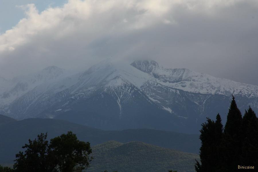 millas-2013-22 Le Canigou dans Pyrénées orientales