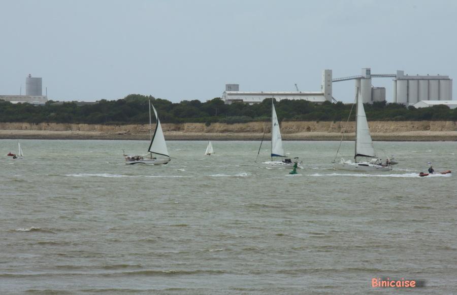 Régates... dans La Rochelle petits-bateaux