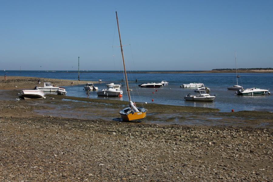 Ile de Ré. Plage de la Patache. dans Charentes Maritimes img_0037_redimensionner