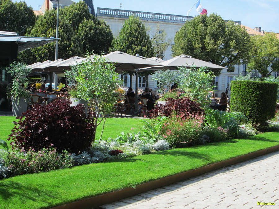 Les terrasses de la Place Colbert. dans Charentes Maritimes img_0359_redimensionner