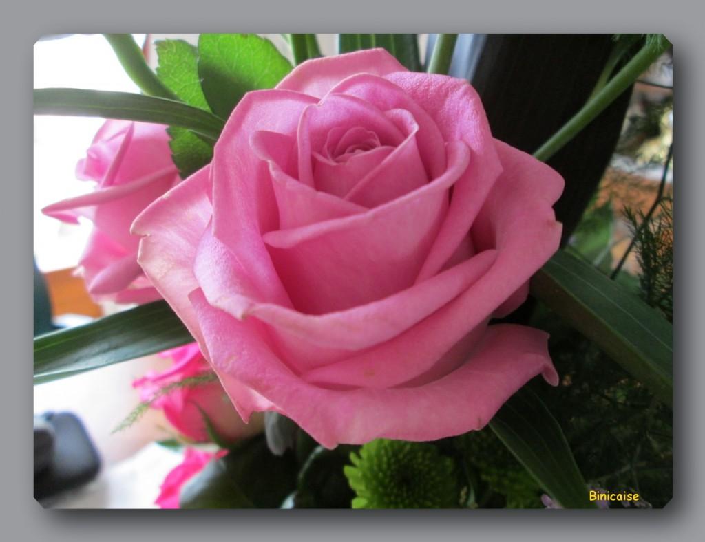 Rose d'un bouquet. dans Fleurs et plantes rose-dans-bouquet