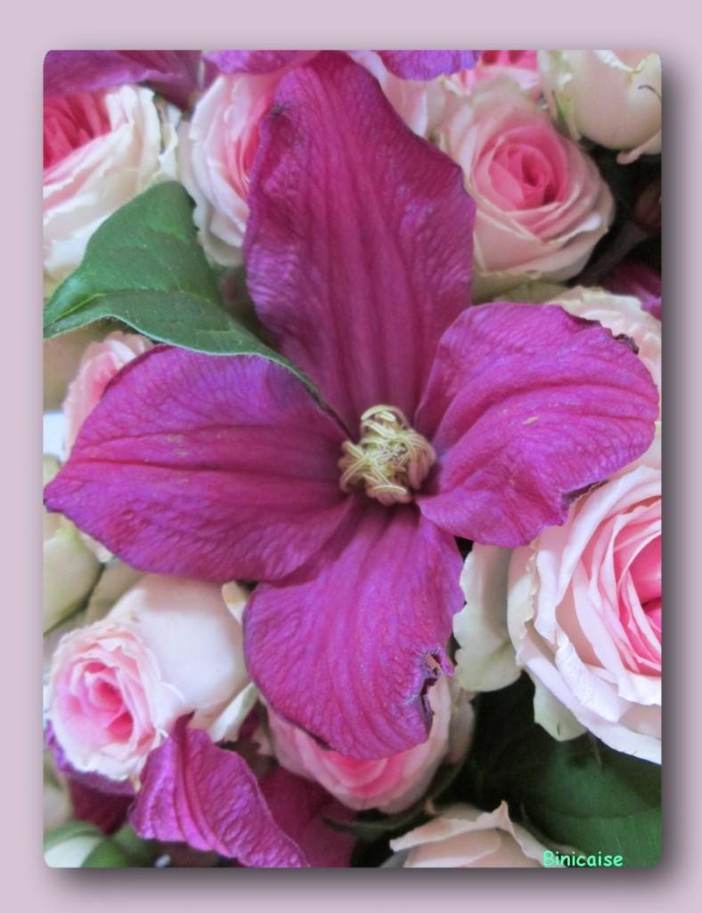Roses et clématites. dans Fleurs et plantes roses-et-clematites