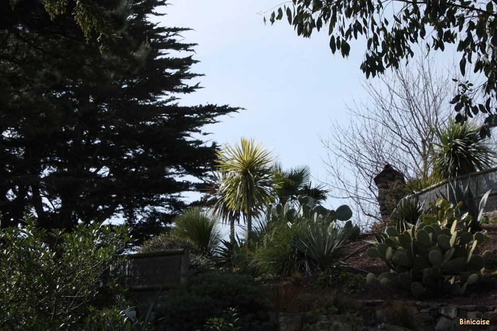 Jardins à Binic 01