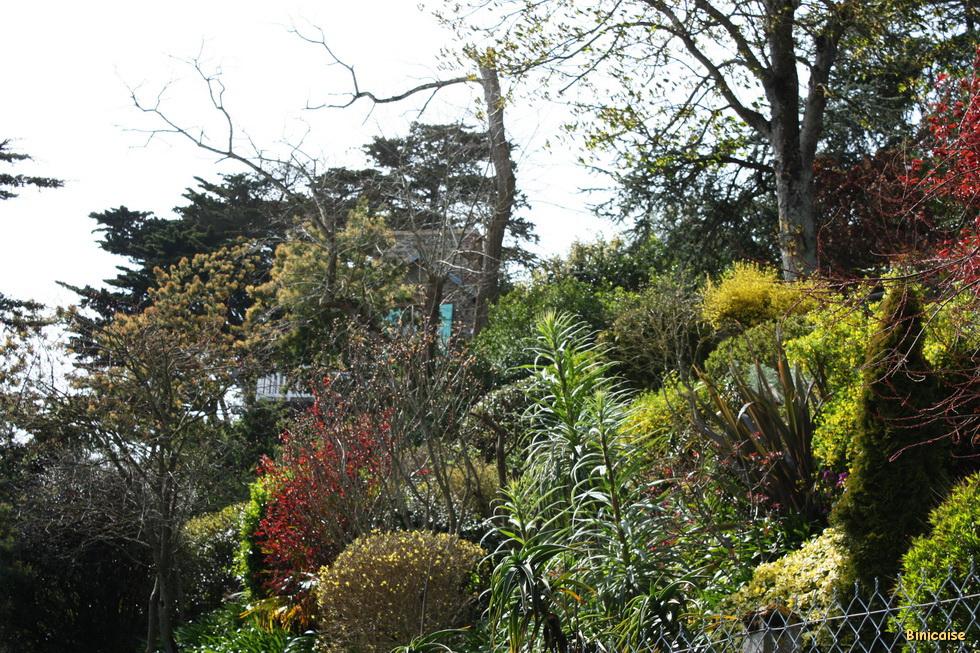 Jardins à Binic 02
