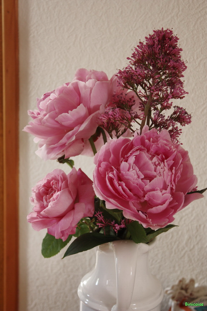 Pivoines et rose 01