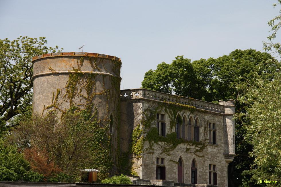 Chateau de Maillezais 02
