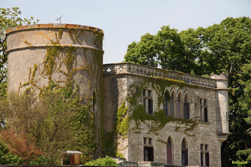 Chateau de Maillezais 03