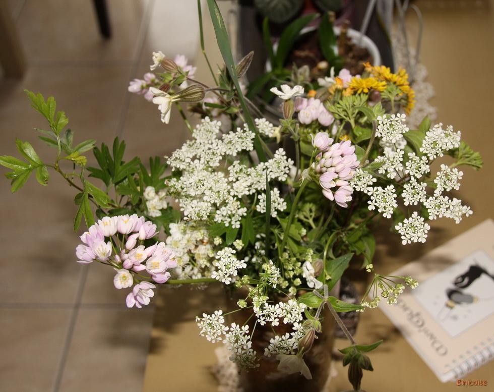 Fleurs des champs 03